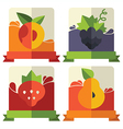 fruit and berries emblems vector image