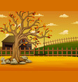 Autumn tree with swing at farm background