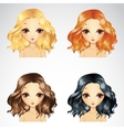 Curly Fluffy Hairstyle Set vector image vector image