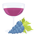 full glass wine and a brush dark grapes vector image vector image