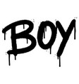 graffiti boy word sprayed isolated on white vector image vector image
