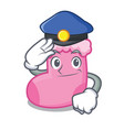 police sock character cartoon style vector image
