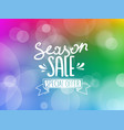 season sale inscription on blured background vector image