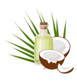coconuts and coconut oil with tropical palm leaves vector image