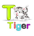 cute baby white tiger vector image vector image