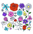 flowers hand drawn elements vector image