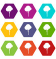 fluffy tree icon set color hexahedron vector image vector image