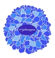 hand-drawn of blue hydrangea vector image vector image