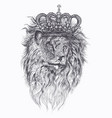 hand drawn tattoo with lion in crown vector image