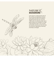 Lotus flower and dragonfly vector image