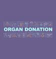 organ donation word concepts banner vector image vector image