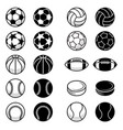 sport balls and equipment vector image vector image