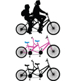 Two-seater bike vector image vector image
