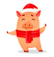 christmas greeting card cute pig vector image
