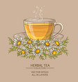 cup of chamomile tea vector image vector image