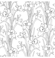 Daffodils narcissus flowers seamless pattern vector image