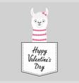 happy valentines day llama alpaca face head vector image vector image