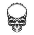 retro vintage skull vector image vector image