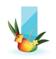 slice of exotic fruit decorated like cocktail vector image