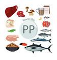 vitamin pp b3 vitamin pp b3 vector image vector image