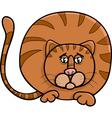 fat cat character cartoon vector image vector image
