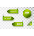 green tags collection with eco tags and labels vector image