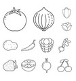 isolated object healthy and ripe sign set of vector image