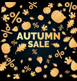 linear autumn sale banner vector image vector image