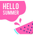 pink hello summer watermelon background ima vector image