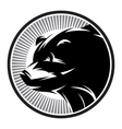 Sport Pattern monochrome logo with bear vector image vector image