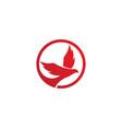 bird logo templat vector image vector image