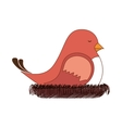 bird nest sleep design vector image vector image