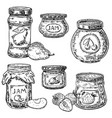 ink hand drawn style fruit jam jar icon set vector image vector image