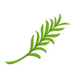 minimal branch with green leaves vector image