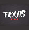 texas lettering handwritten sign hand drawn vector image
