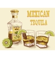 two stemware tequila with bottle vector image