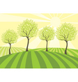 Country field vector image