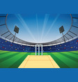 cricket stadium background vector image vector image
