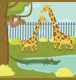 funny sloth giraffe and crocodile characters in vector image vector image