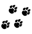 paw logo vector image vector image