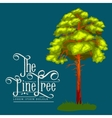 Pine Tree with branch and leafs in the wild forest vector image
