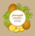 pineapple frame vector image
