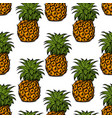 pineapple palm pattern vector image