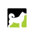 dog animal logo icon design vector image vector image