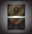 elegant business card vector image vector image