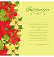 floral background with Poinsettia vector image vector image