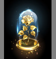 gold rose under a glass dome vector image vector image
