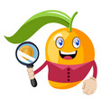 mango with magnifying glass on white background vector image vector image