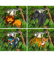 Wid animals living in the forest vector image