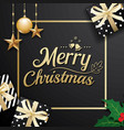 gold merry christmas decoration ornament with vector image